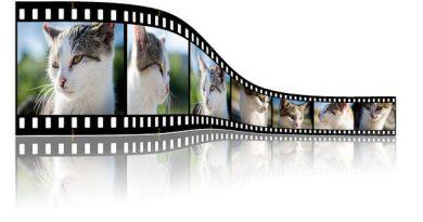crea video con foto e musica